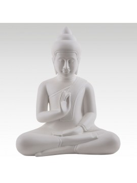 WHITE BUDDHA TEACHING